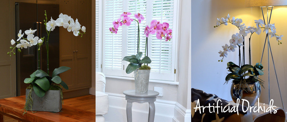 /collections/the-artificial-orchid-collection