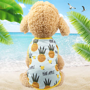 SOO JOO Lovely Pineapple Summer Pet Couple Vacation Outfit