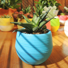 SOO JOO Colorful Resin Succulent Plants Pot