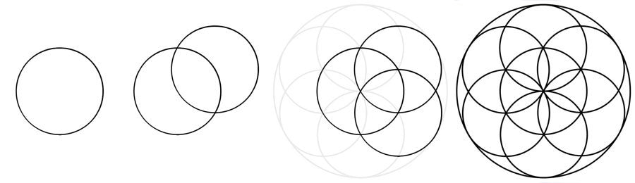 constructing the flower of life design
