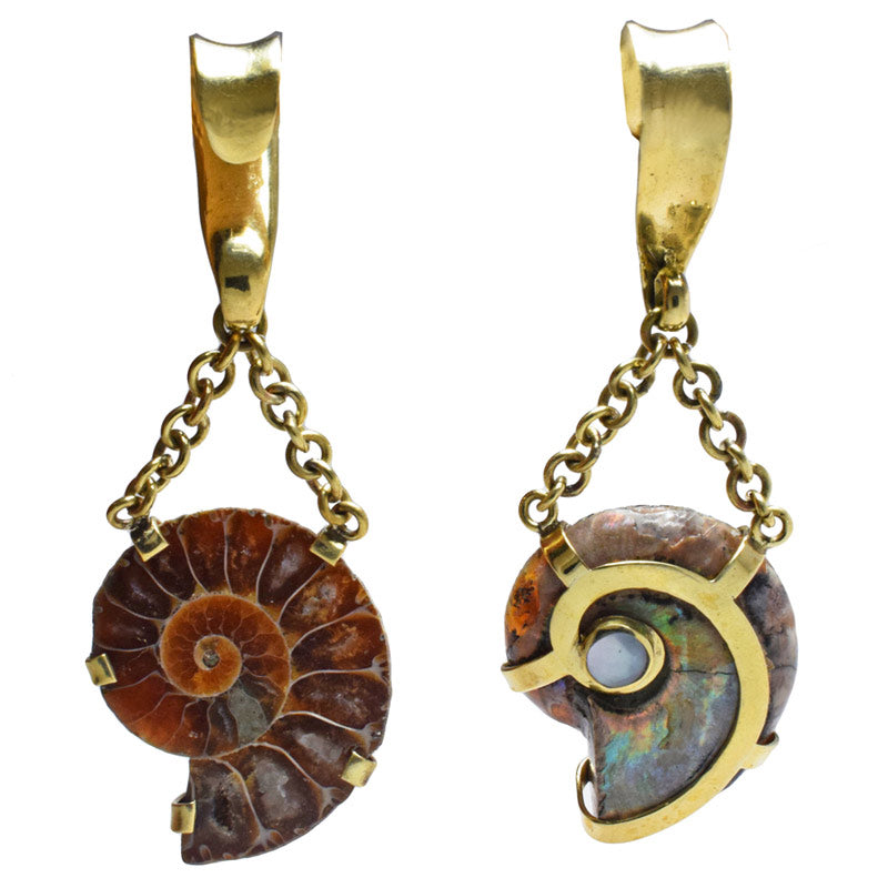Ammonite Ear Hanger Weights