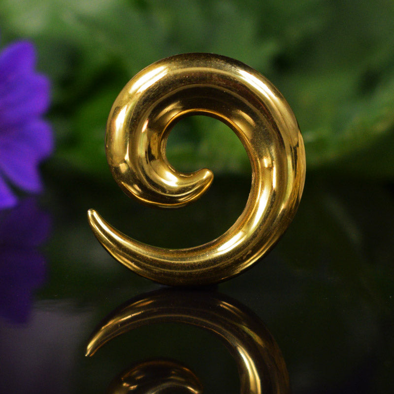 Gold Ear Stretcher Spirals
