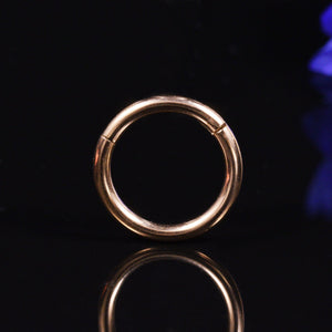 Hinged Segment Ring Gold Titanium