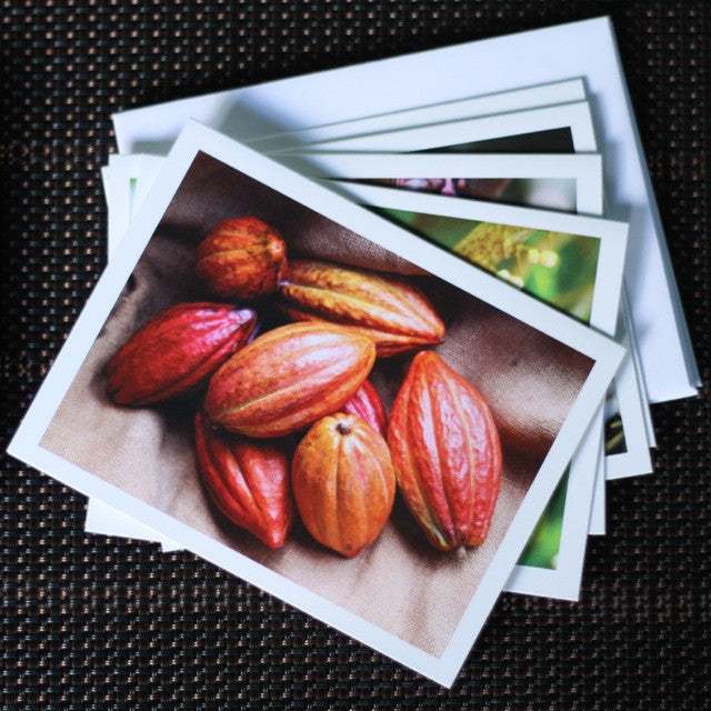 Greeting Cards - Coffee & Cacao (pack of 5)