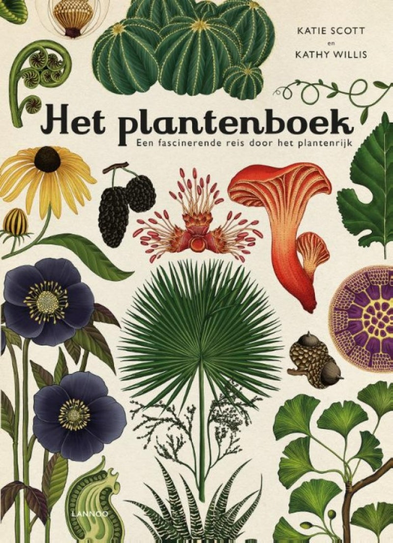 'Het plantenboek' - Childrens book - The Seed