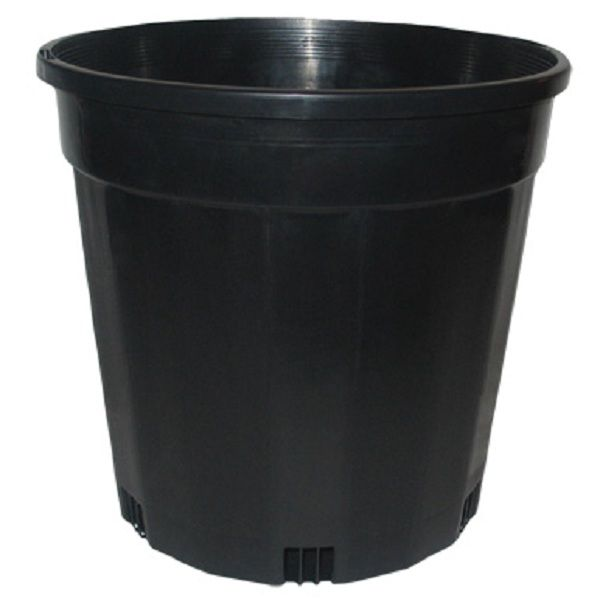 BLACK GROWERS POT 200MM