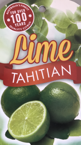 LIME TAHITIAN / SUBLIME 25CM