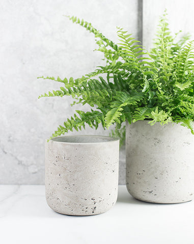Straight Cement Pots