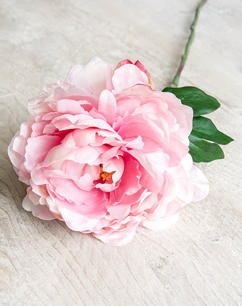 Full Bloom Pink Faux Garden Peony