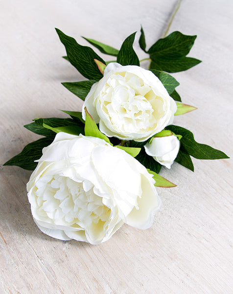 White Faux Double Peony