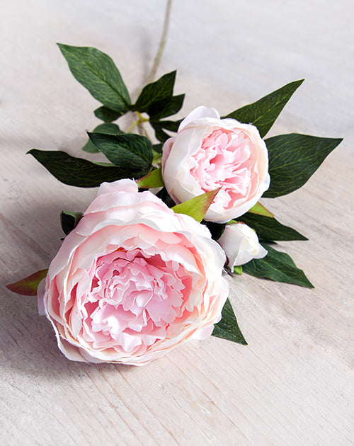 Pink Faux Double Peony