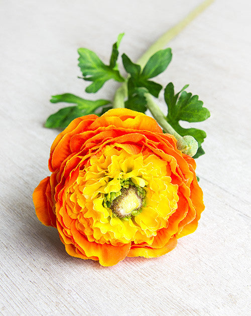 Orange Faux Pom Pom Ranunculus