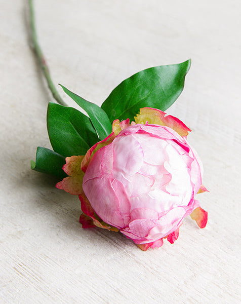 Budded Pink Faux Garden Peony