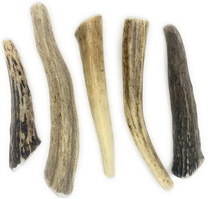 NEW Perfect Pet Chews 5 ct Deer Antler Dog Chews All Natural Grade A Premium Antlers, Long Lasting Dog Treats, Organic Dog Chews, Naturally Shed Antlers from USA