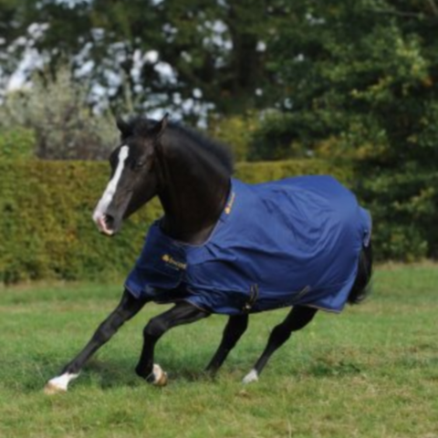 Bucas Irish Turnout Light/50 Rug Navy/Gold