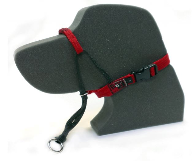 Black Dog Training Head Halter - Large