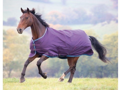 SHIRES TEMPEST ORIGINAL 300G TURNOUT RUG