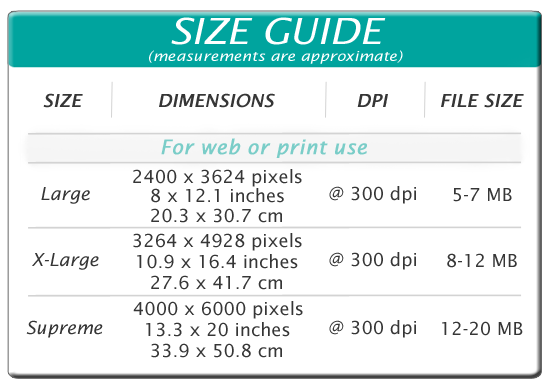 LookLagoon Stock Photo Size Guide