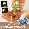 Rapid-Grow Rooting Powder - GiftedLoving