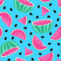 NEW: Pool Party Watermelons by Diana Mancini for Blank Quilting