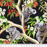 NEW: Koalas: Koala in Trees/Australian Flora by KK Designs
