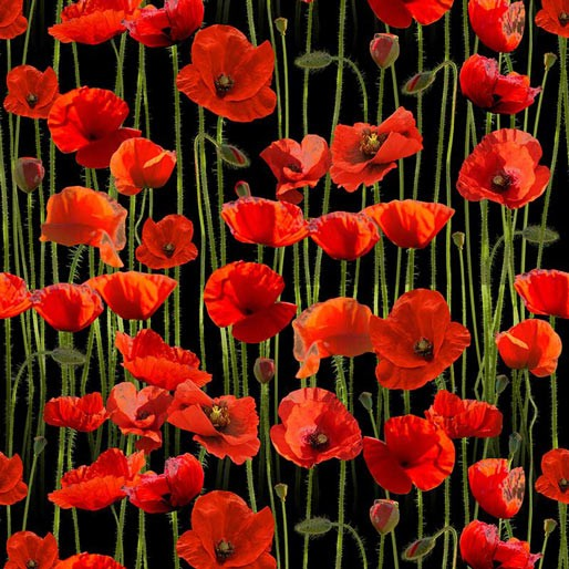 Remembering Anzac: Poppies on Black Allover by KK Designs