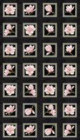 NEW ARRIVAL: Accent on Magnolias: Magnolia Blooms Blocks Panel Coral by Jackie Robinson for Benartex