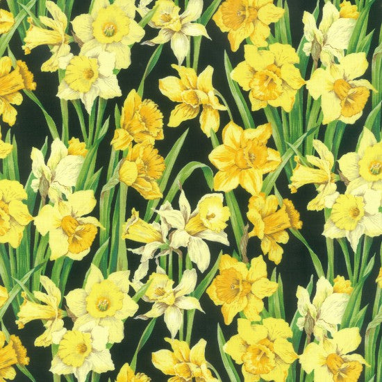 NEW: Daffodils by Nutex - 100% Cotton