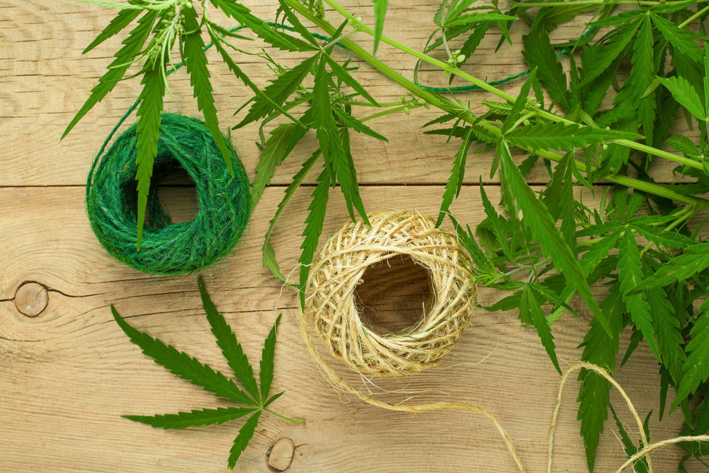 Did You Know Hemp Could Do This?: Fashion Edition