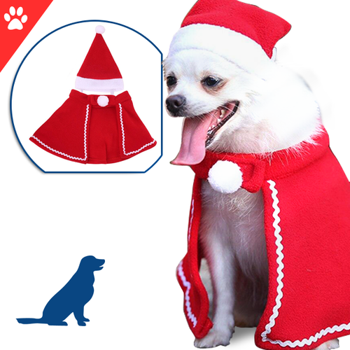 Beautiful Pet Hat and cloak for pets in christmas day