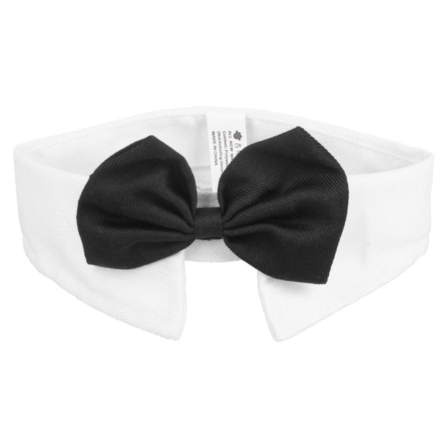 Dog bow tie - dog4shine