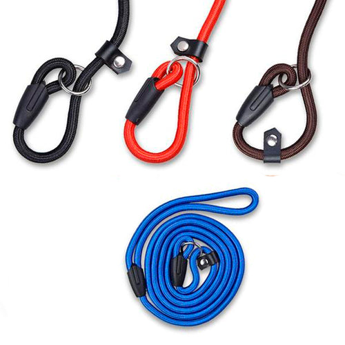Dog leash adjustable - dog4shine