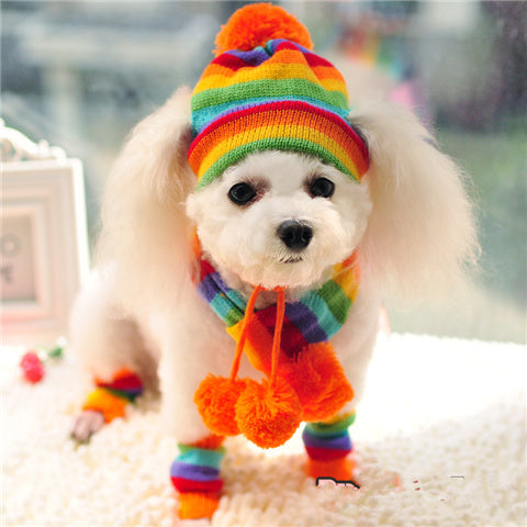 Pet knitted hat and scarf - dog4shine