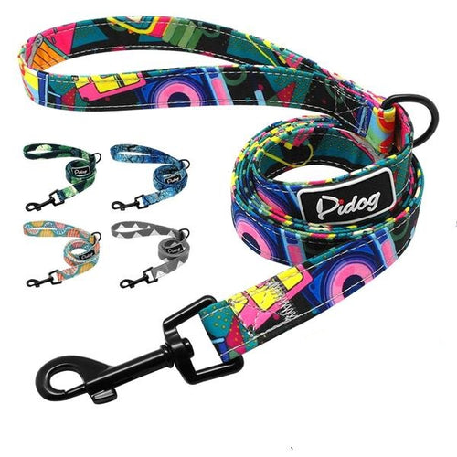 Dog leash spring - dog4shine