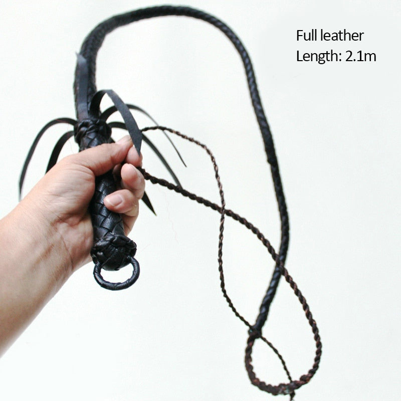 Snake-Shaped Long Whip