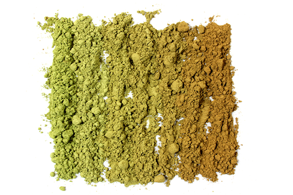 Kratom Powder Vs. Kratom Leaves: Which is Better?