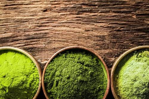 Which Is The Best Kratom Strain For Me?