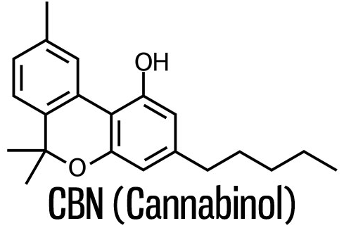 All about Cannabinol Cannabinoid (CBN)