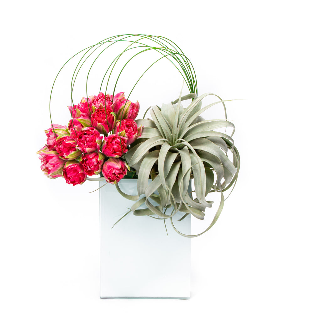 DESIGNER'S CHOICE FLORAL ARRANGEMENT