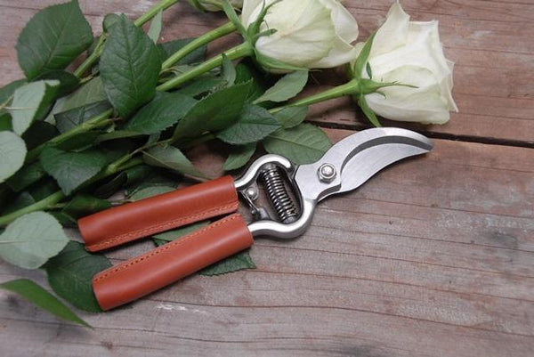 Premium Secateurs with leather grips A Little Seedy
