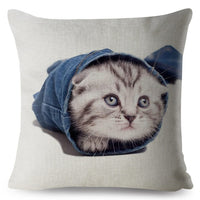 Cute Scottish Fold Cat Print Throw Pillow Cover 45*45cm Square Cushion Covers Linen Pillow Case Sofa Home Decor Pillows Cases
