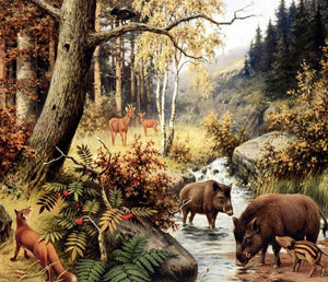 Animals in Forest Diamond Painting