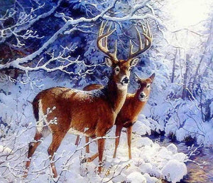 Beautiful Deer Pair in Snow Diamond Painting Kit