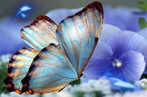 Blue Orchids & Butterfly Paint by Diamonds