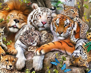 Big Cats Paint by Diamonds