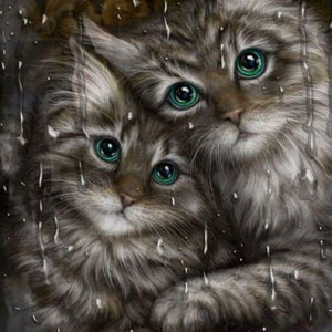 Cats Paint by Diamonds