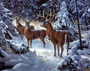 Christmas Elk Diamond Painting Kit