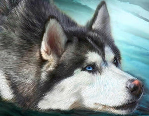 Cute Husky Diamond Painting Kit