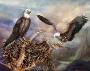 Eagle Nest Paint by Diamonds