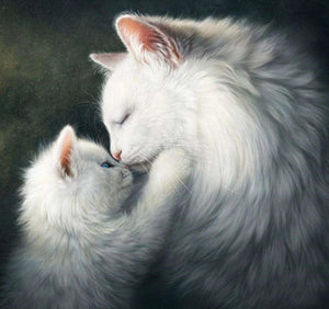 Fluffy Cats Diamond Painting